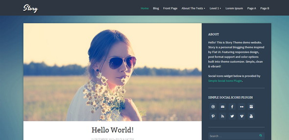 Story - стильный шаблон для WordPress